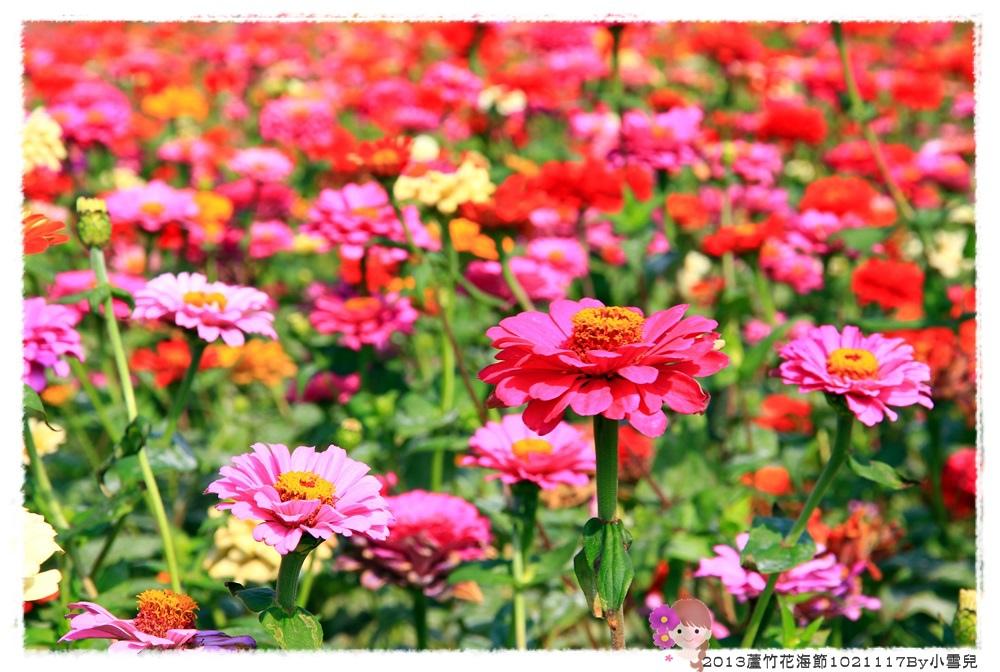 2013蘆竹花海節1021117By小雪兒IMG_0543.JPG