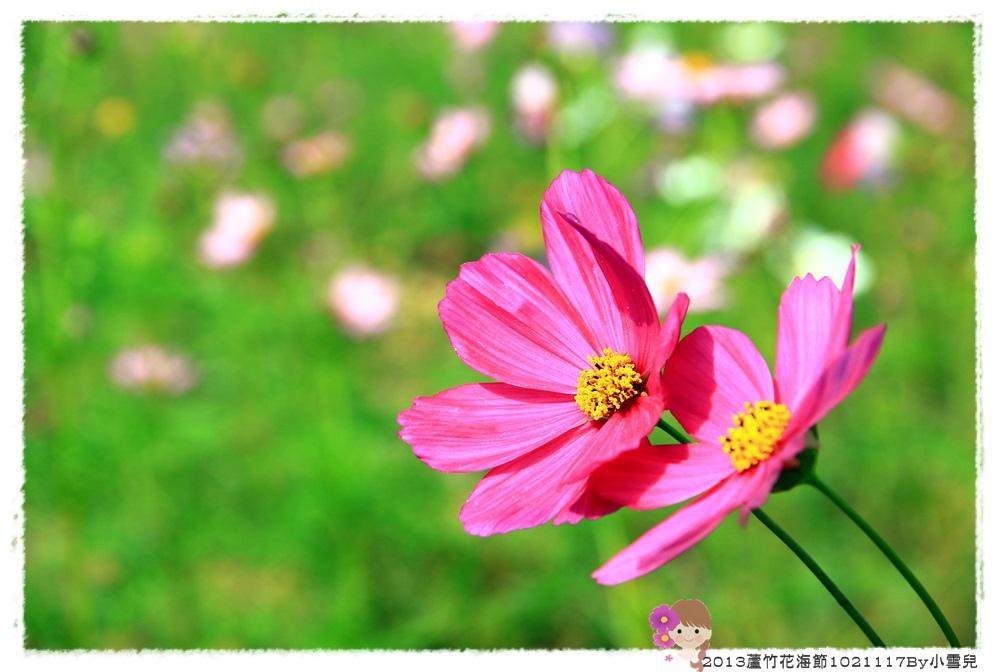 2013蘆竹花海節1021117By小雪兒IMG_0584.JPG
