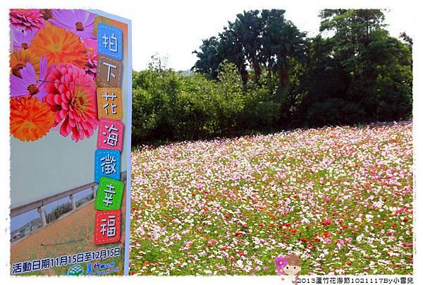 2013蘆竹花海節下1021117By小雪兒IMG_0783.JPG