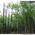 2013年暑假溪頭園區1020821By小雪兒IMG_2624.JPG