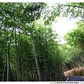 2013年暑假溪頭園區1020821By小雪兒IMG_2625.JPG