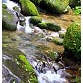 2013年暑假溪頭園區1020821By小雪兒IMG_6739.JPG