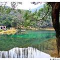 新山夢湖1021124By小雪兒IMG_1121.JPG