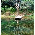 新山夢湖1021124By小雪兒IMG_1156.JPG