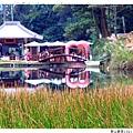 新山夢湖1021124By小雪兒IMG_1168.JPG