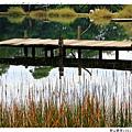 新山夢湖1021124By小雪兒IMG_1172.JPG