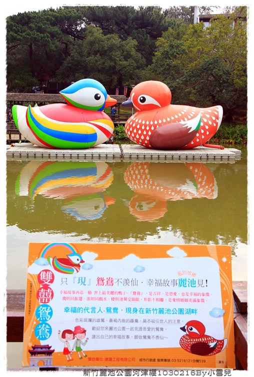 新竹麗池公園河津櫻1030216By小雪兒IMG_3480.JPG
