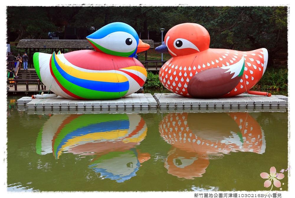 新竹麗池公園河津櫻1030216By小雪兒IMG_3484.JPG