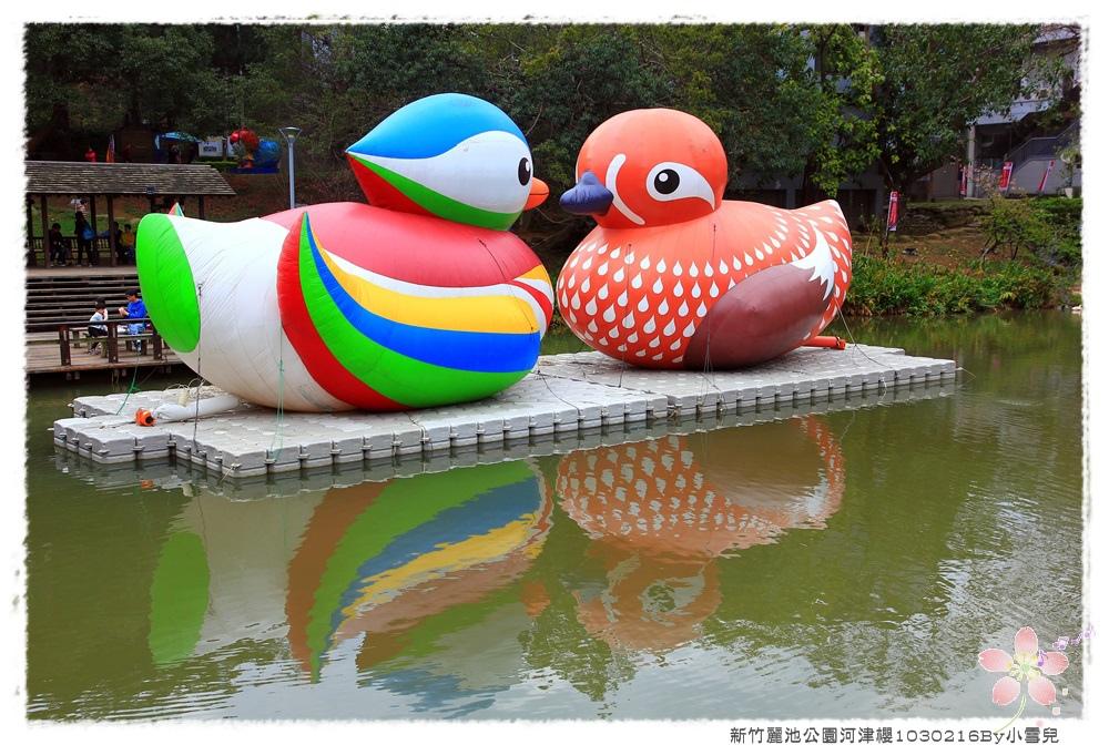 新竹麗池公園河津櫻1030216By小雪兒IMG_3495.JPG