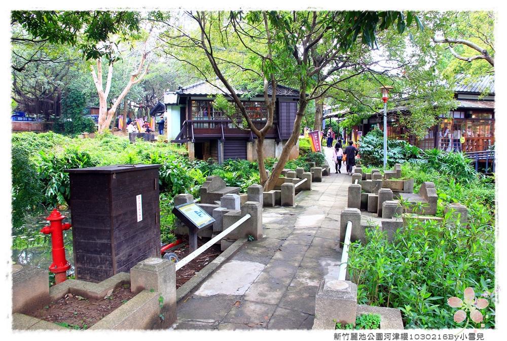 新竹麗池公園河津櫻1030216By小雪兒IMG_3522.JPG