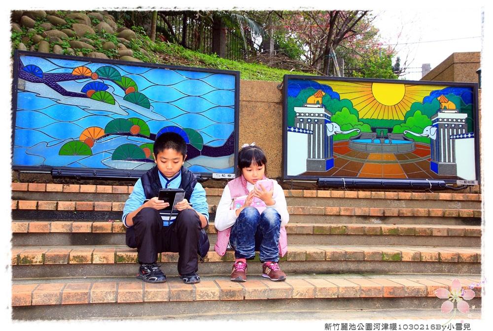 新竹麗池公園河津櫻1030216By小雪兒IMG_3579.JPG