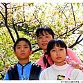 新竹麗池公園河津櫻1030216By小雪兒IMG_3625.JPG