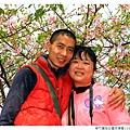 新竹麗池公園河津櫻1030216By小雪兒IMG_3649.JPG