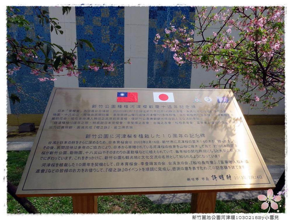 新竹麗池公園河津櫻1030216By小雪兒IMG_7214.JPG