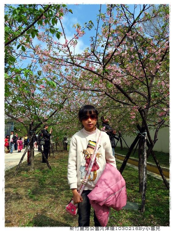 新竹麗池公園河津櫻1030216By小雪兒IMG_7240.JPG