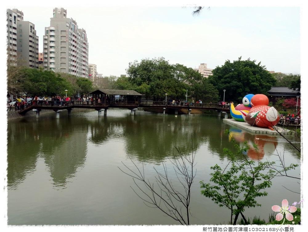 新竹麗池公園河津櫻1030216By小雪兒IMG_7322.JPG