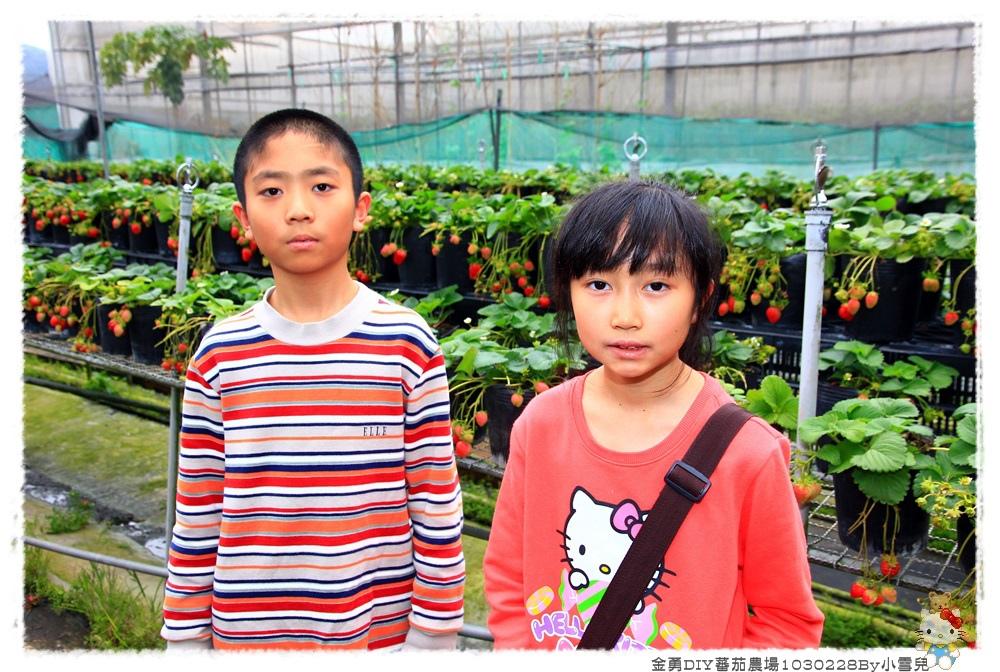 金勇DIY蕃茄農場1030228By小雪兒IMG_4467.JPG