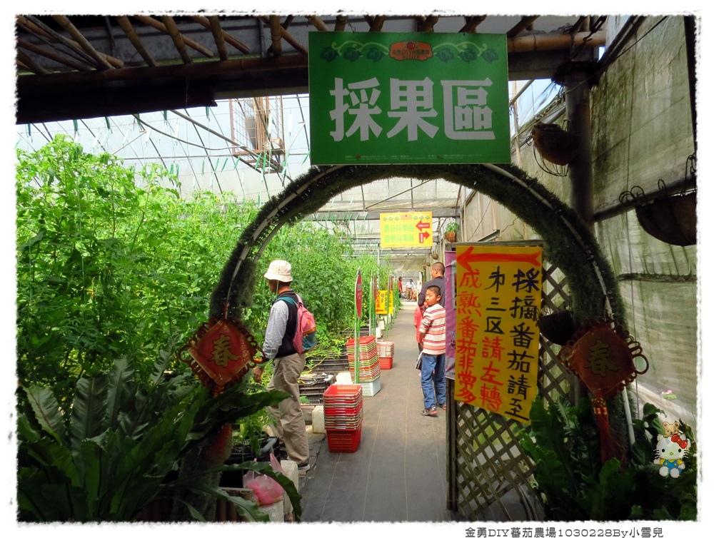 金勇DIY蕃茄農場1030228By小雪兒IMG_7488.JPG