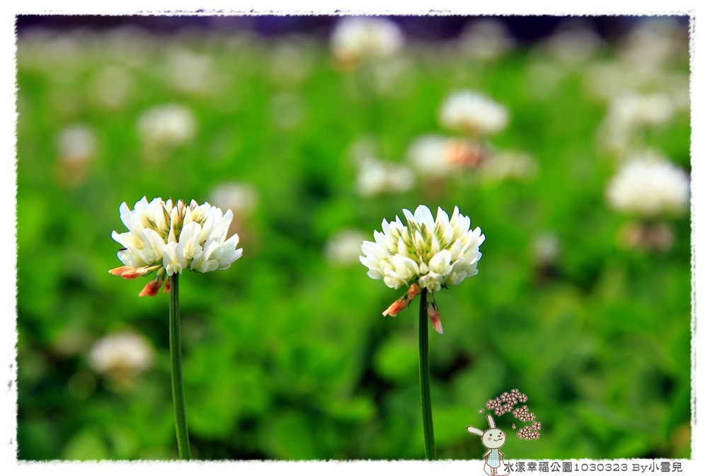 水漾幸福公園1030323 By小雪兒IMG_5171.JPG