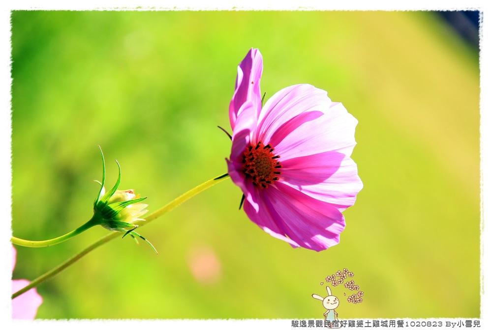 暑假遊記第五天1020823 By小雪兒IMG_7929 2014 04 14 10_37_29.JPG