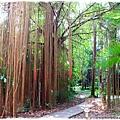 台北植物園布政使司文物館 by小雪兒1030511IMG_6947.JPG