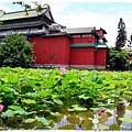 台北植物園布政使司文物館 by小雪兒1030511IMG_7025.JPG