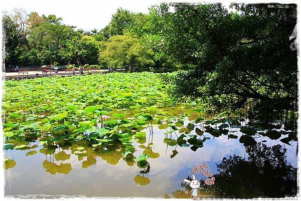 台北植物園布政使司文物館 by小雪兒1030511IMG_7046.JPG