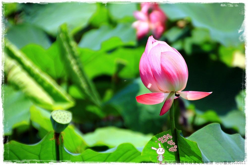 台北植物園布政使司文物館 by小雪兒1030511IMG_7072.JPG