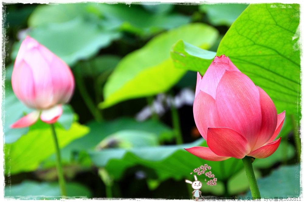台北植物園布政使司文物館 by小雪兒1030511IMG_7087.JPG