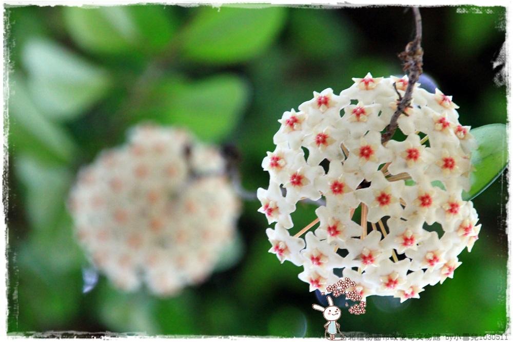 台北植物園布政使司文物館 by小雪兒1030511IMG_7132.JPG