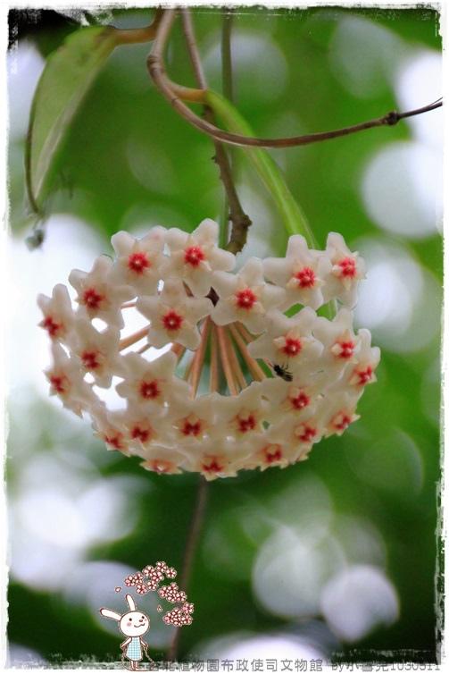 台北植物園布政使司文物館 by小雪兒1030511IMG_7142.JPG