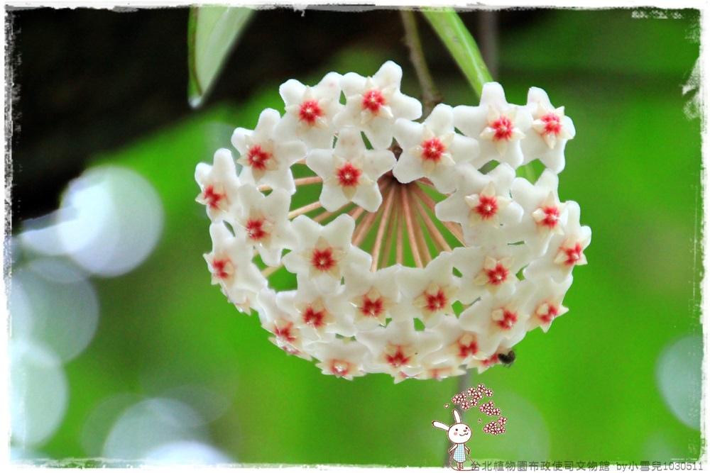 台北植物園布政使司文物館 by小雪兒1030511IMG_7145.JPG
