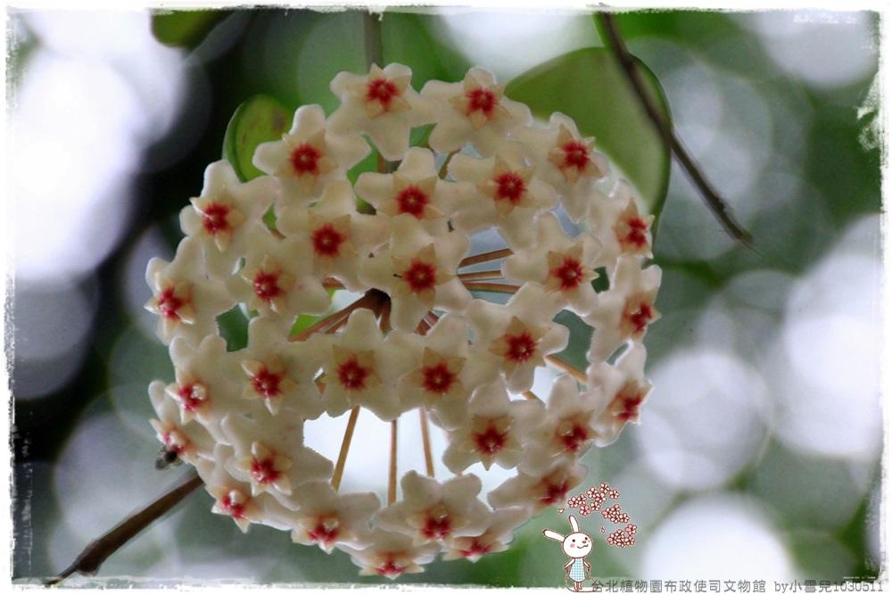 台北植物園布政使司文物館 by小雪兒1030511IMG_7149.JPG