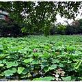 台北植物園布政使司文物館 by小雪兒1030511IMG_9202.JPG
