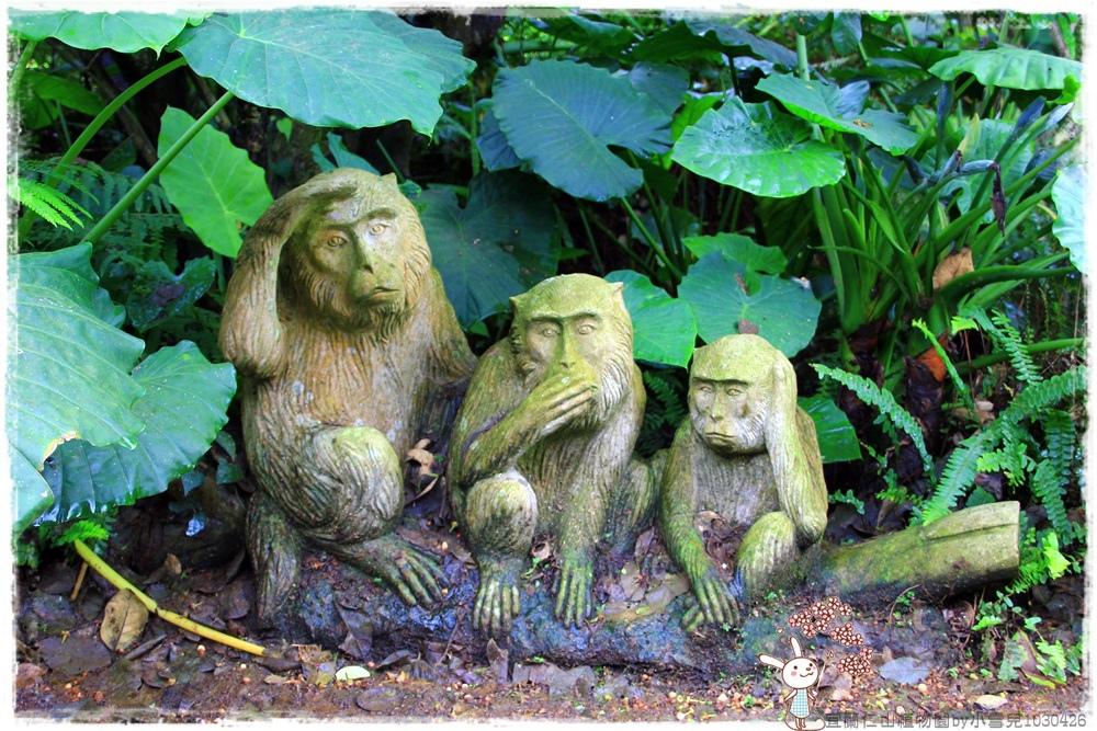 宜蘭仁山植物園by小雪兒1030426IMG_6133.JPG