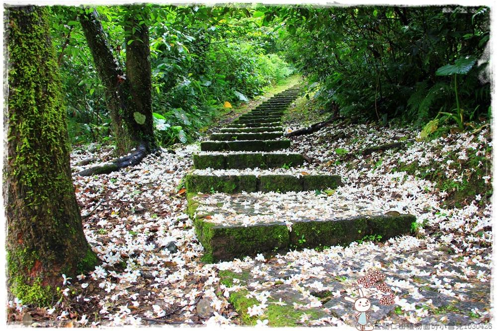 宜蘭仁山植物園by小雪兒1030426IMG_6151.JPG