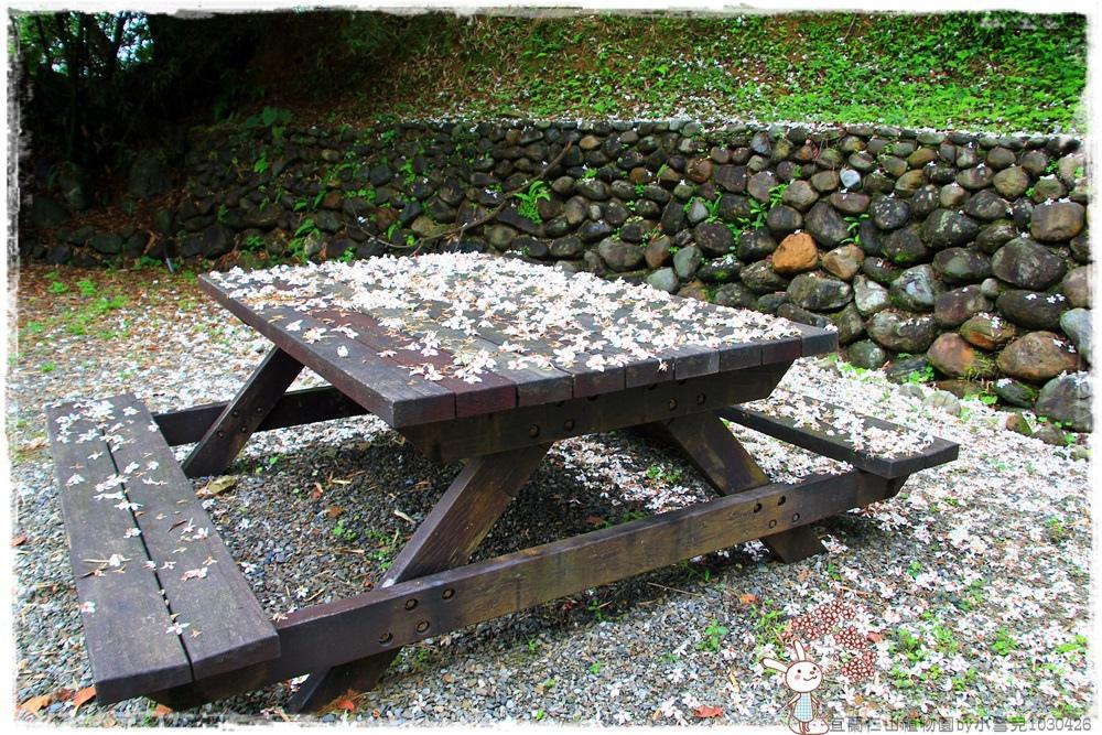 宜蘭仁山植物園by小雪兒1030426IMG_6199.JPG