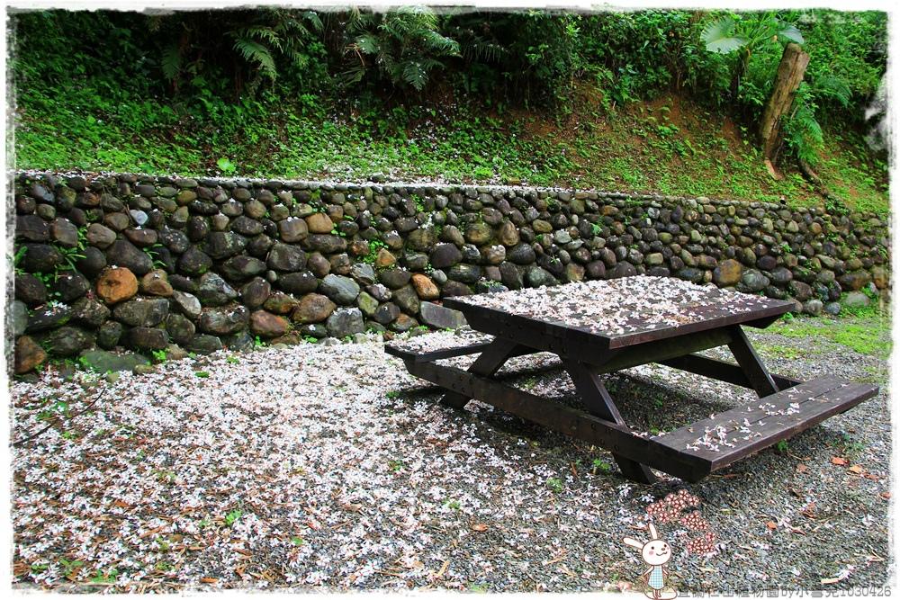 宜蘭仁山植物園by小雪兒1030426IMG_6206.JPG