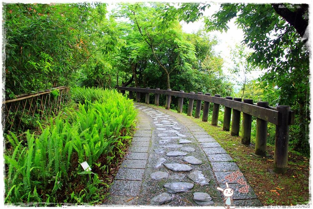 宜蘭仁山植物園by小雪兒1030426IMG_6208.JPG