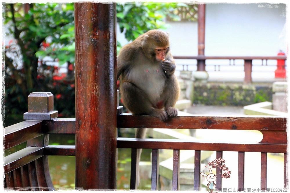 宜蘭仁山植物園by小雪兒1030426IMG_6299.JPG