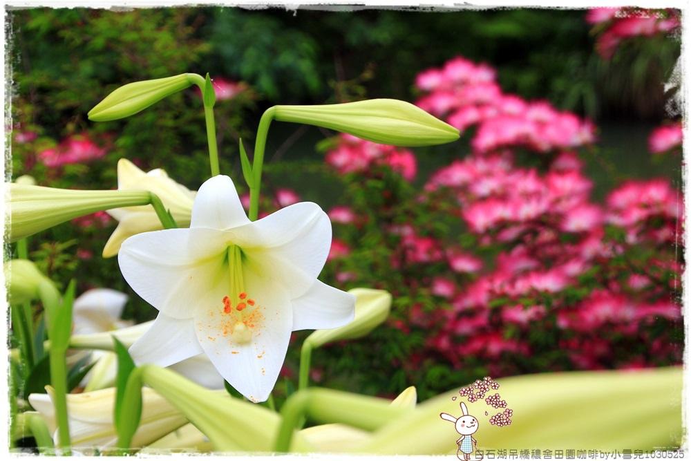 白石湖吊橋穠舍田園咖啡by小雪兒1030525IMG_7424.JPG
