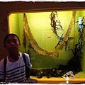 基隆科學博物館小by小雪兒1030705IMG_0589.JPG