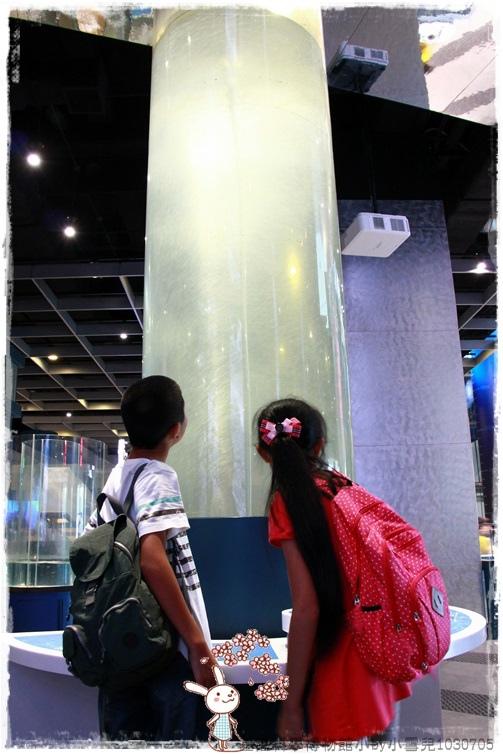 基隆科學博物館小by小雪兒1030705IMG_8933.JPG