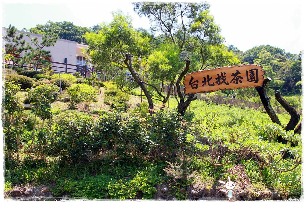 台北找茶園 by小雪兒1030824IMG_3245.JPG