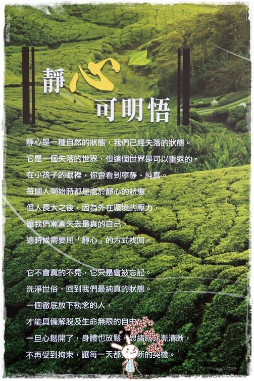 台北找茶園 by小雪兒1030824IMG_3286.JPG