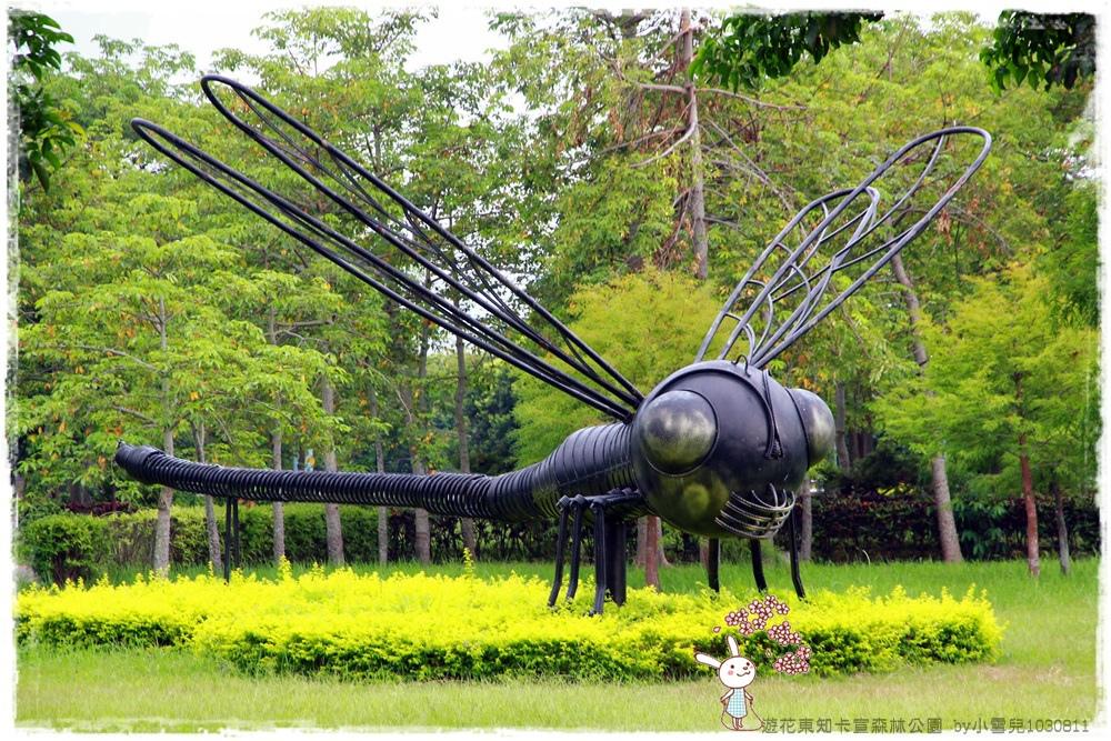 遊花東知卡宣森林公園 by小雪兒1030811IMG_1097.JPG