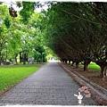 遊花東知卡宣森林公園 by小雪兒1030811IMG_1102.JPG