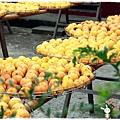 新埔柿餅趣by小雪兒1031005IMG_4302.JPG