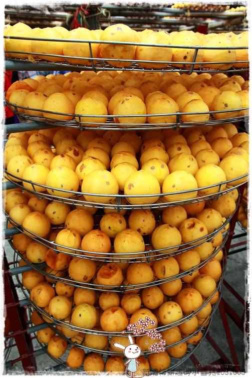 新埔柿餅趣by小雪兒1031005IMG_4323.JPG