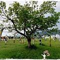 大農大富平地森林園地by小雪兒1030812IMG_2652.JPG